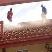 Roof Painters